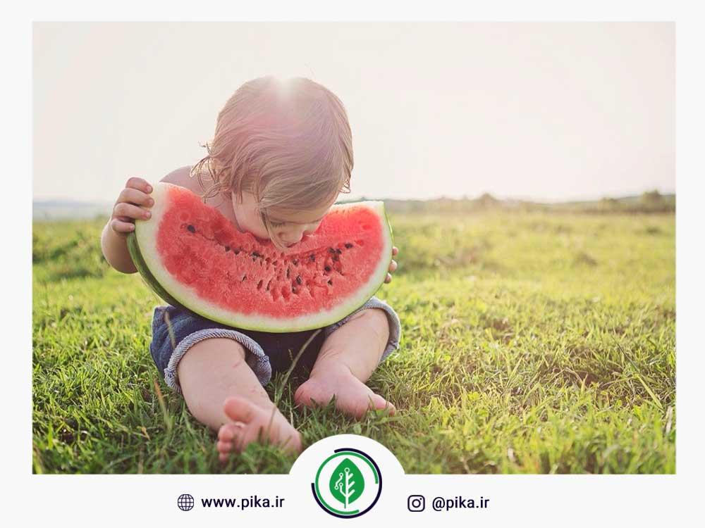 هندوانه تغذیه کودک