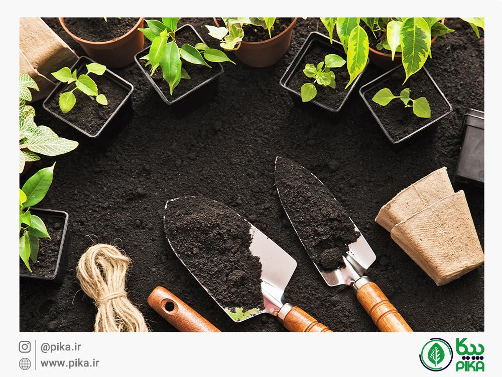 کود سبز و تاثیرات آن بر خاک